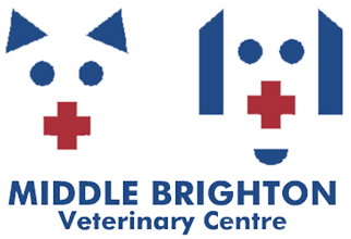 Middle Brighton Veterinary Centre